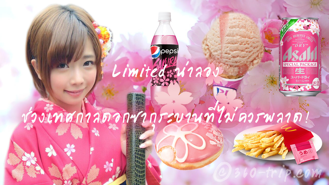 Sakura-ดอกซากุระ-cherry blossoms-limited
